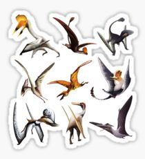 Pterosauria: The Cladogram Sticker