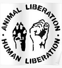 animal Liberation Poster