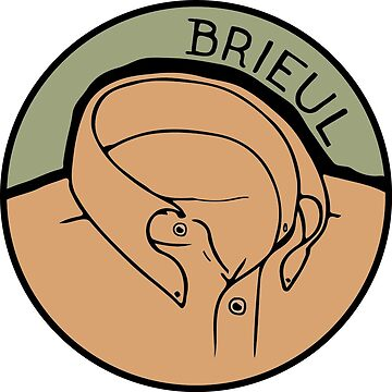 Brieul // Original Suedehead Stylists by Brieul