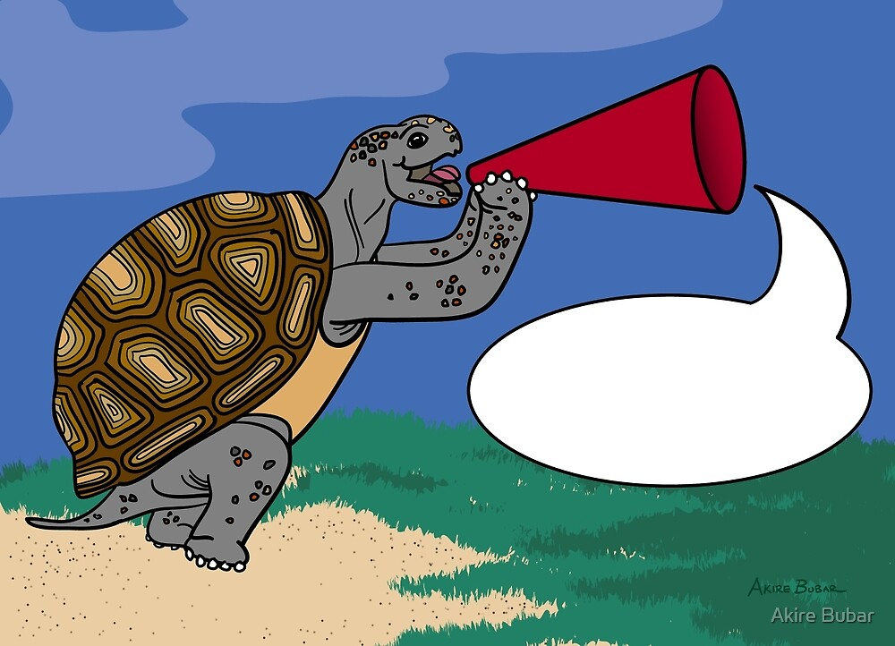 Tortoise has Something to Say! by Akire Bubar