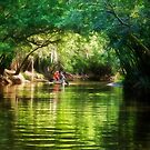 Paddling Down the River - Florida by Kathy Weaver
