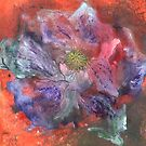 Clematis by Carol Rowland