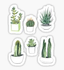 watercolour cacti and succulents Sticker