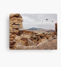 Three Birds Over Landfill in Morocco Canvas Print