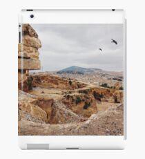 Three Birds Over Landfill in Morocco iPad Case/Skin