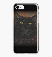 Doorstop iPhone Case/Skin