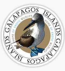 Galapagos Islands Blue footed Booby Sticker