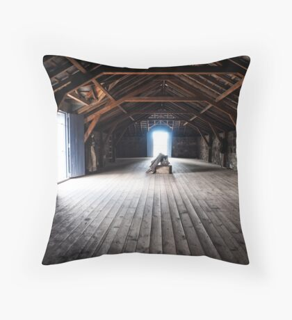 Stable Loft Throw Pillow