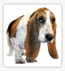 Basset waddle Sticker