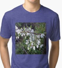 White plum blossom with dew drops. Tri-blend T-Shirt