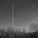 Peach Mountain Observatory Tower at Stinchfield Woods by jrier