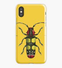Big Beetle Bug iPhone Case/Skin