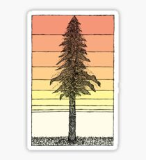 Coastal Redwood Sunset Sketch Sticker