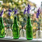 The Green Lavender Bottles  by Adam Calaitzis