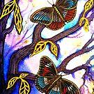 On Golden Wings - Butterflies by Linda Callaghan