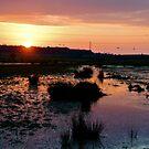 Sunset over the Marsh by Debrak2012