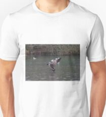 Canada Goose coming in to land T-Shirt