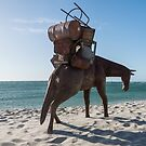 SCULPTURE BY THE SEA - COTTESLOE 2016 by Ian Robertson