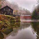 Morning At the Mill - McConnells Mill, PA by Kathy Weaver