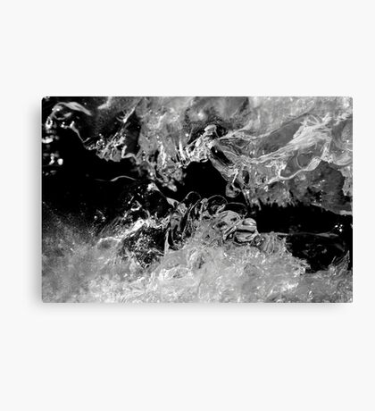 Frozen Illusion Canvas Print