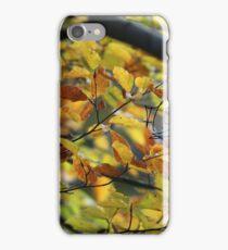 Autumn dreams . anno domini 2012. Doctor Faustus. iPhone Case/Skin