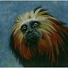 lion tamarin  by casshanley