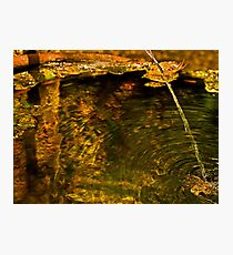 Water and Rust Photographic Print