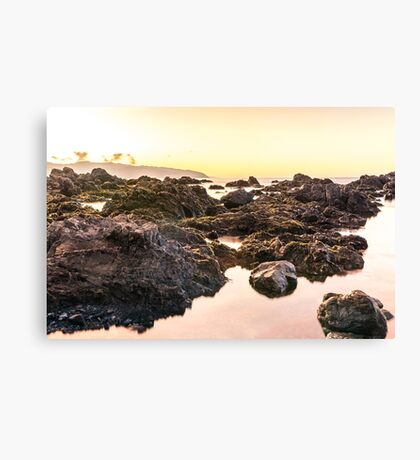Sunrise: Red Rocks Walkway, Wellington, NZ Canvas Print