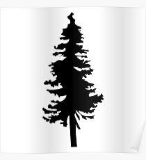 Plain Black Tree   Doug Fir/Pine/Evergreen Poster