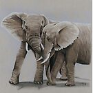 elephant friends by casshanley