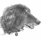 """black dog """"Rosie"""" drawing by Mike Theuer"""