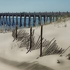 Among the Dunes  by John  Kapusta