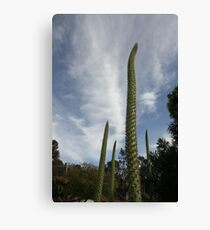 Sci Fi  on Planet Earth! Canvas Print