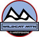 WILDCAT MOUNTAIN NEW HAMPSHIRE Mountain Skiing Ski Art by MyHandmadeSigns