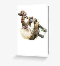 Baby Sloth Greeting Card