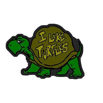 I like turtles. by borg