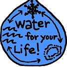 Water for your Life! by Multnomah ESD Outdoor School