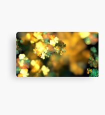Autumn Blossoms Canvas Print
