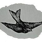 a silver mt zion by atdi198d