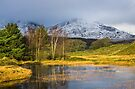 Kelly Hall Tarn Winter by Stephen Miller