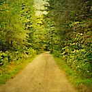 It's a long road to where I want to go by Scott Mitchell