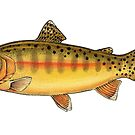 Golden Trout by Eugenia Hauss