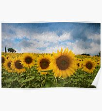 Sunflower field - Oil Impasto Impressionism Poster