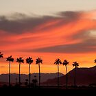 Spring Sunrise in the Desert Southwest. (VIew Large) by barnsis