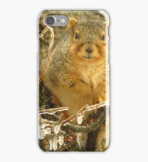 Waiting For Peanuts iPhone Case/Skin