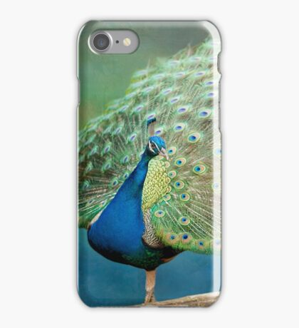 Peacock in Early Spring iPhone Case/Skin