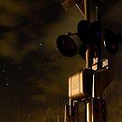 Crossing in the Dark by Aaron  Schilling