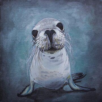 Australian Sea Lion by afletcher