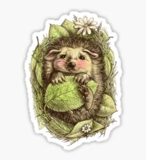 Little hedgehog colored Sticker