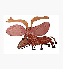 Xander The Moose With The Big Ears Photographic Print